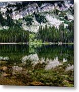 Tenaya Lake Metal Print