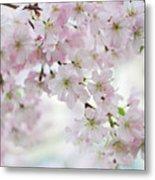 Tender Spring Pastels Metal Print