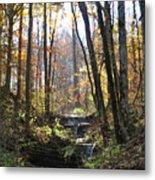Tennessee Falls Metal Print