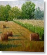 Tennessee Hay And Corn Fields Metal Print