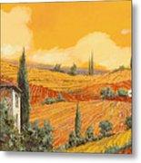 terra di Siena Metal Print by Guido Borelli