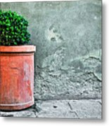 Terracotta Flower Pot On Sidewalk Metal Print