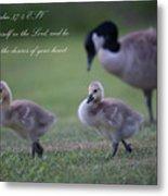 Psalm 37 Metal Print