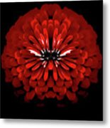 Test Red Abstract Flower 3 Metal Print