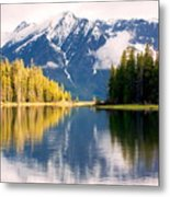 Teton Beauty Metal Print