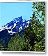 Teton Picture Perfect Metal Print