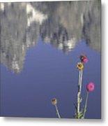 Teton Reflections Metal Print