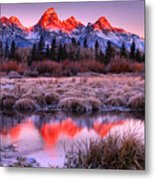 Teton Reflections In The Frosted Willows Metal Print