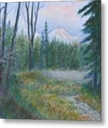 Teton Valley Metal Print