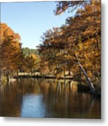 Texas Autumn Metal Print