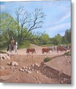 Texas Cattle Drive Metal Print