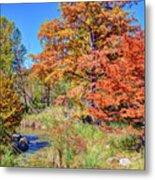 Texas Hill Country Autumn Metal Print