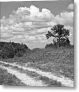 Texas Hill Country Trail Metal Print