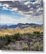 Texas Landscapes #3 Metal Print