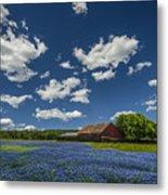 Texas Springtime Metal Print