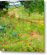 Texas Wildflowers And Cactus - Country Road Metal Print