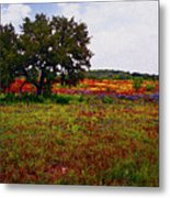 Texas Wildflowers Metal Print by Tamyra Ayles
