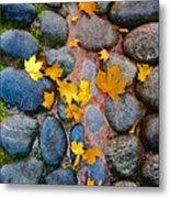 Texture. Autumn. Metal Print
