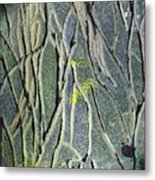 Texture Study One   Entanglement Metal Print