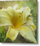 Textured Daylily Metal Print