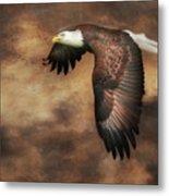 Textured Eagle 2 Metal Print