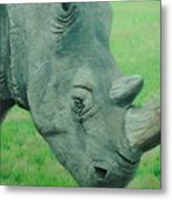 Textured Rhino Metal Print