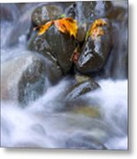 Textures Of Autumn Metal Print