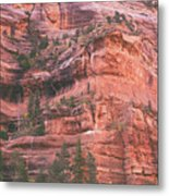 Textures Of Zion Metal Print