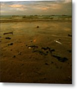 Th Low Tide Metal Print