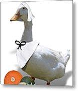 Thanksgiving Pilgrim Duck Metal Print