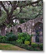 The Alamo Oak Metal Print