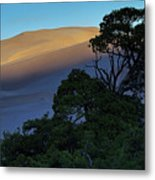 The Anthill Metal Print
