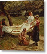 The Apple Gatherers Metal Print by Frederick Morgan