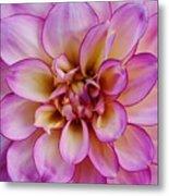 The Art In Flowers 1 Metal Print