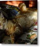 The  Art Of Relaxation Metal Print