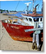 The Artemis Aground Metal Print