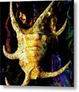 The Arthritic Spider Conch Seashell Metal Print