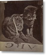 The Attentive Pupil Metal Print