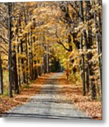 The Back Road In Autumn Metal Print