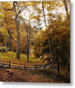 The Back Way Metal Print