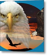 The Bald Eagle 2 Metal Print