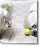 The Ball Metal Print