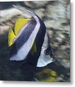 The Bannerfish Metal Print