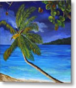The Beach At Night Metal Print