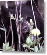 The Bearcub And The Dandelion Metal Print