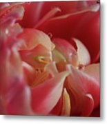 The Beauty Inside Metal Print by Tracy Hall