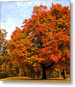 The Beauty Of Autumn  Metal Print