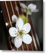 The Beauty Of Strings Metal Print