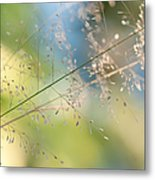 The Beauty Of The Earth. Natural Watercolor Metal Print