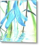The Beauty Of Watery Reflection Metal Print
